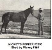 mickeyspepperf2850