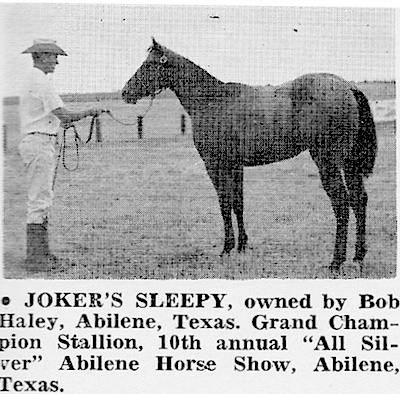 Joker B, Appaloosa Stallion