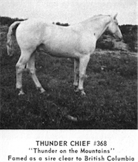 Thunder Chief
