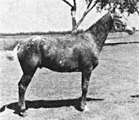 lpagliacci1809