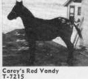 careysredvandy7215