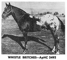 whistlebritches